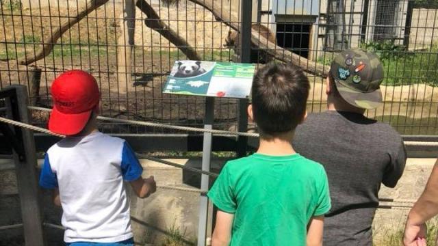 Minden kaposvári óvodás eljuthat az állatkertbe