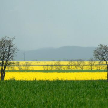 Záporok mérséklik a májusi hőséget