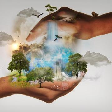 Először természetvédelmi filmnapok Komáromban – Ingyenes vetítésekkel!