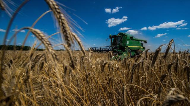 Debreceni búzatanácskozás: a magyar mezőgazdaságot a támogatások tartják életben