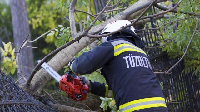 Kidőlt fák, elárasztott pincék adnak munkát a tűzoltóknak