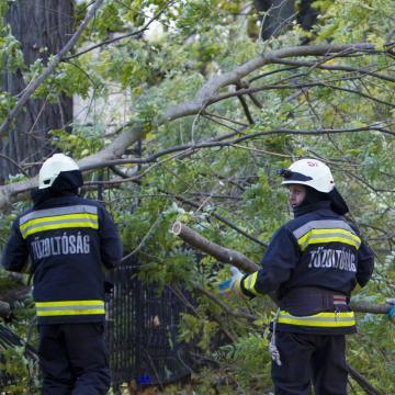 Lakóházakat rongált meg, fákat csavart ki a vihar Veszprém megyében