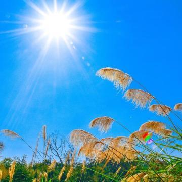 Sok napsütés várható a héten