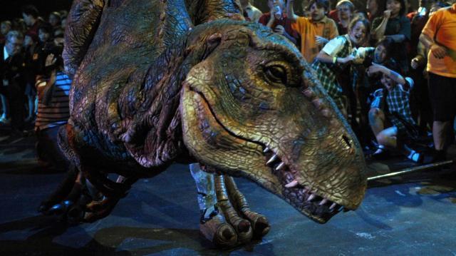 Megérkezett Szegedre a dinoszaurusz-kiállítás anyaga