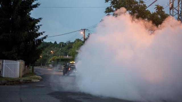 150 településen folytatódik a szúnyogirtás