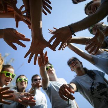 Megérkeztek a gólyák a Kaposvári Egyetemre