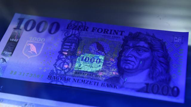 Több száz millió forintos pénzmosási ügyben emeltek vádat Szegeden