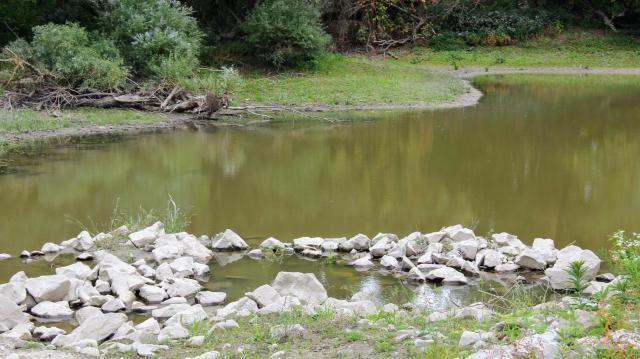 Helyreállították a Táti-szigetek vizes élőhelyeitvizes élőhelyeit