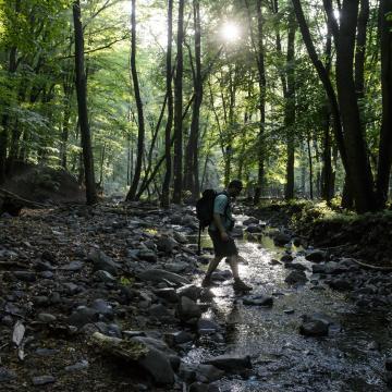 Több tízmilliárdot fordít a nemzeti parkok fejlesztésére a kormány 2020-ig