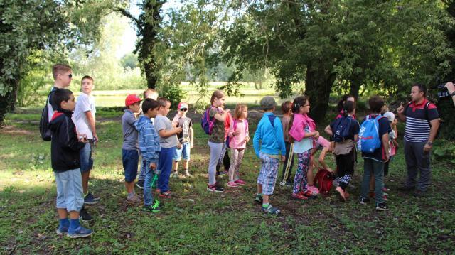 Új tanösvény készül a szőnyi Forró-szigetre önkéntesek közreműködésével