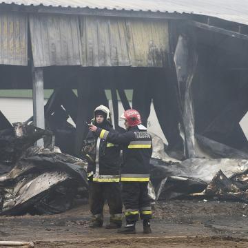 Húszezer kiskacsa pusztult el tűzvészben Csongrád megyében