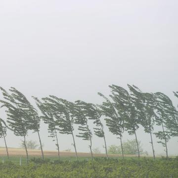 Országos riasztás a viharos szél miatt