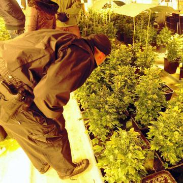 Kábítószerkereskedőket fogtak el a rendőrök Szegeden