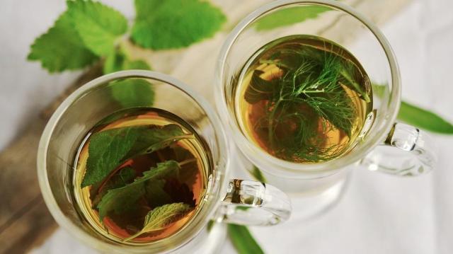 Likőr és bor is készül gyógynövényekből – Előadás a Tanodában