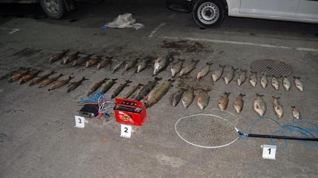 Akkumulátorokkal fogták a halakat az orvhalászok