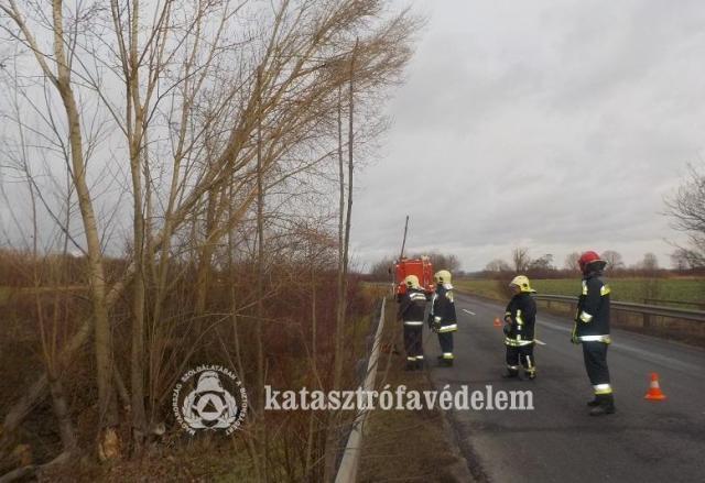 Többször riasztották tűzoltóinkat a szélvihar miatt