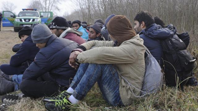 Húsz határsértőt és egy embercsempészt fogtak el a rendőrök Mezőhegyes közelében