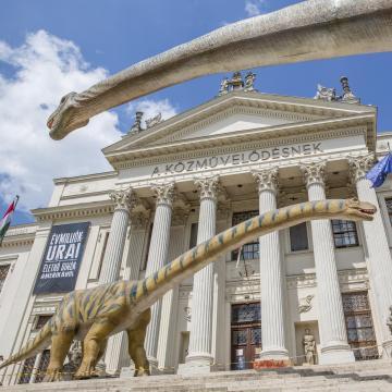 Már több mint kilencvenezren látták a Móra-múzeum dinoszauruszkiállítását