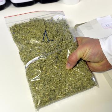 11 kiló marihuana ára 6 év börtön