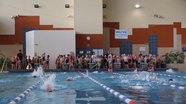 A mélyvízben is bátran úsznak