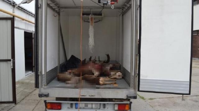 Lopott vadhússal üzletelt a vadászmester