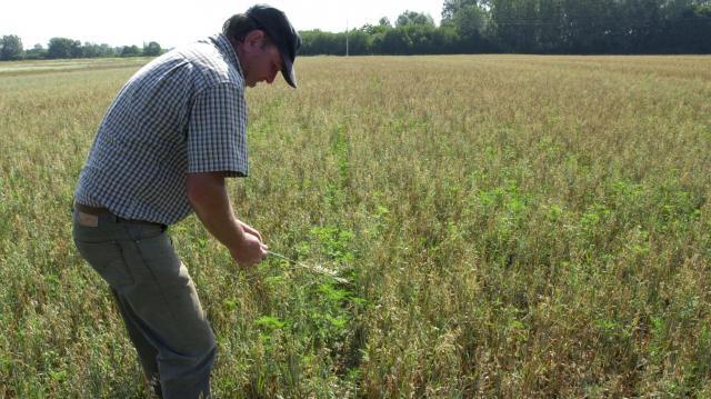 Átszervezik a falugazdász hálózatot