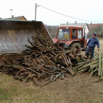 Bírság tűzifa feketeértékesítéséért és be nem jelentett alkalmazottért