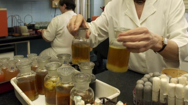 Ételmérgezés és vírus okozta a tömeges rosszullétet Lábatlanon