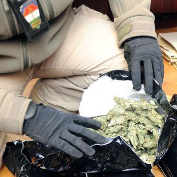Tizenegy kiló marihuánát találtak a pénzügyőrök Röszkén