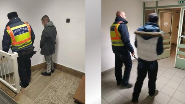 Csipogtak az ellopott csibék a rendőröknek