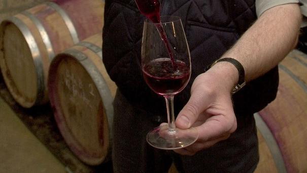 Magyar borászati szakbemutatót tartanak Varsóban