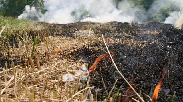 Az egész országra kiterjesztették a tűzgyújtási tilalmat
