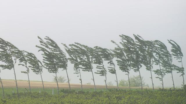 Többfelé is viharos szélre figyelmeztetnek