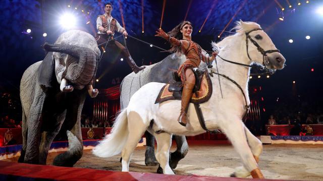 Októberig 22 városban 200 előadást tart a 25 éves Magyar Nemzeti Cirkusz