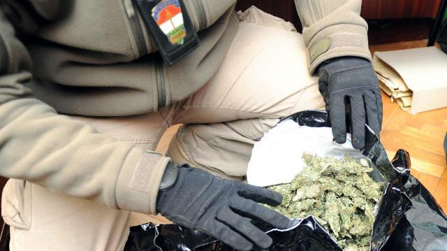 Tizenöt kilogramm marihuánát találtak a pénzügyőrök Röszkén