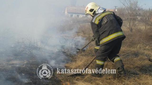 Újra szabadtéri tűzzel harcoltak az esztergomi tűzoltók