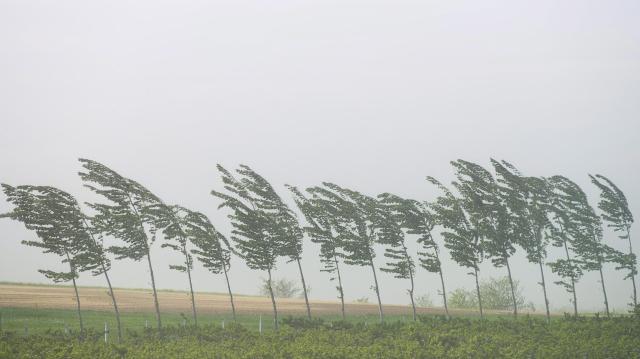 Viharos széllel kezdődik a hét