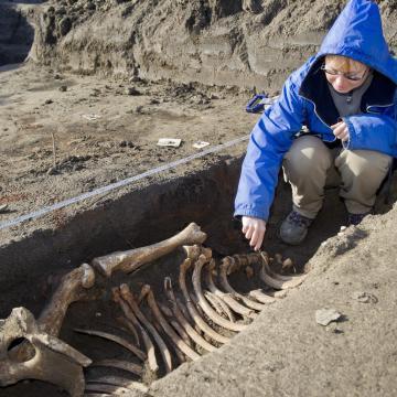 Régészeti leleteket találtak a szakemberek a szentesi Tóth József Színház alagsorában