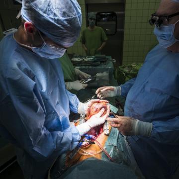 Tavaly több mint négyszáz szervátültetés volt Magyarországon