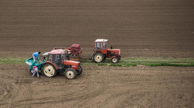 Idén csaknem ötven jogcímen igényelhető agrártámogatás