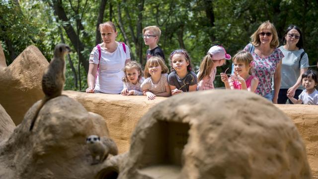Kaposvári óvodások a pécsi állatkertben jártak