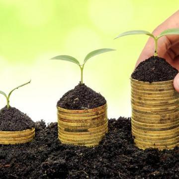 Új növény-egészségügyi szabályozás lép életbe idén
