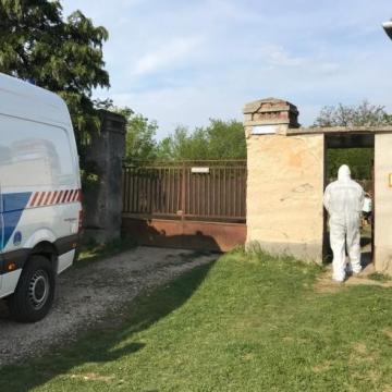 Letartóztatták az anyja megölésével gyanúsított Vas megyei férfit