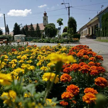 Meghosszabbították a Virágos Magyarország verseny határidejét
