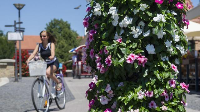 Meghosszabbították a Virágos Magyarország verseny jelentkezési határidejét