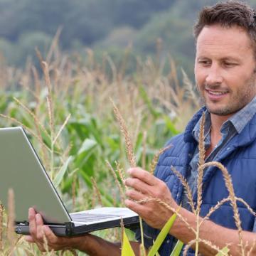 Most érdemes benyújtani az agrártámogatási kérelmeket