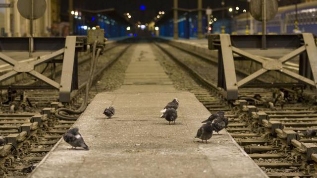 Két hétig elkerülik a vonatok a Keletit