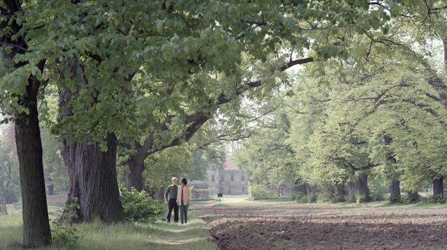Egymillió facsemetét ültettek el Észak-Magyarországon