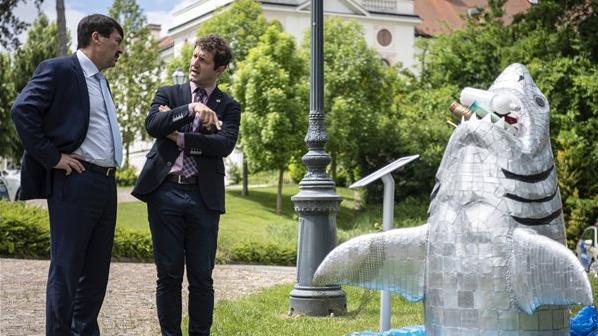 Bálna bölcsesség nyerte a gödöllői természetfilm fesztivál fődíját