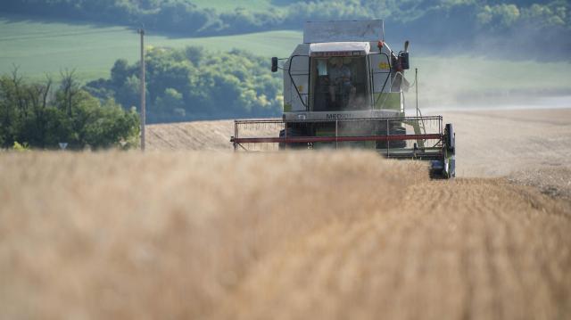 Június végén kezdődhet az aratás
